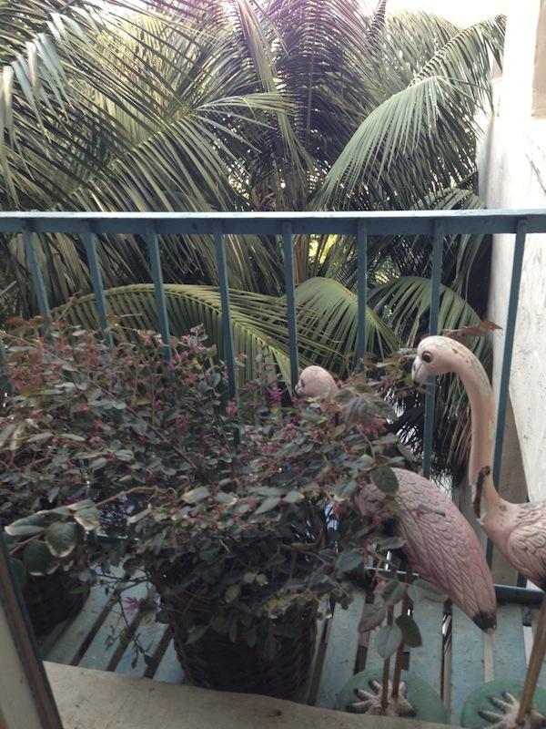 vintage lawn pelicans