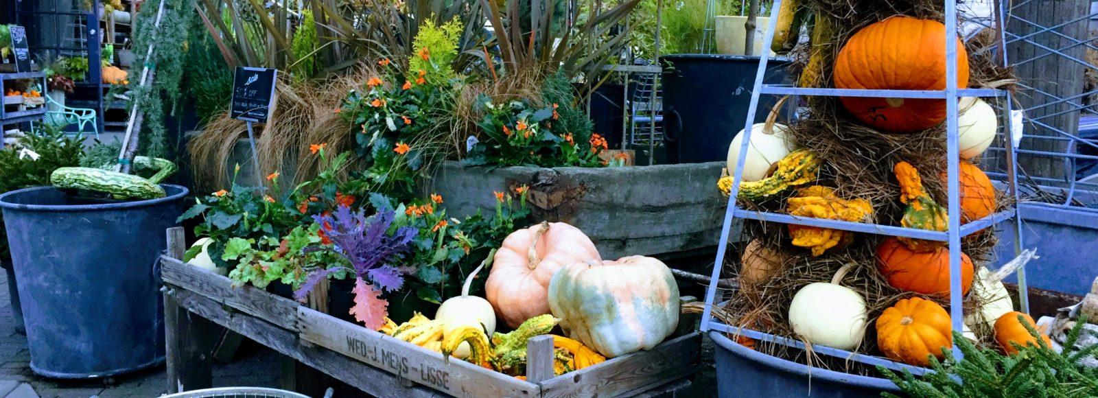 Four Seasons of Home & Garden Decor at Terrain in Westport | Tami ...