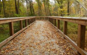 Bridge on the Norwalk River Valley Trail in Wilton CT